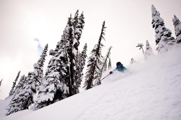 skov-sne-offpiste-ski-heliski
