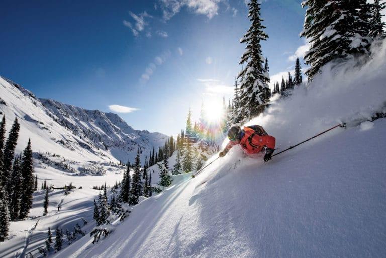 bjerge-sne-ski-offpiste-skov-oplevelse